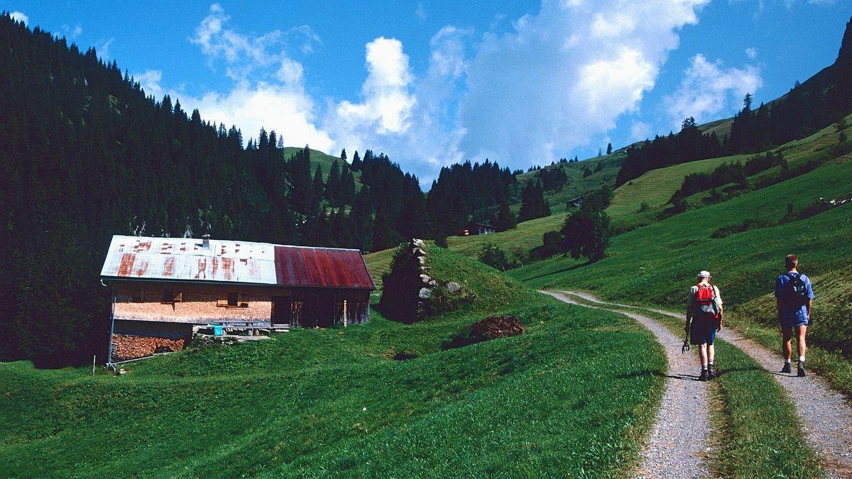 Schutz der Alphütte vor Lawinen aus der steilen Diedamskopf-Nordlanke