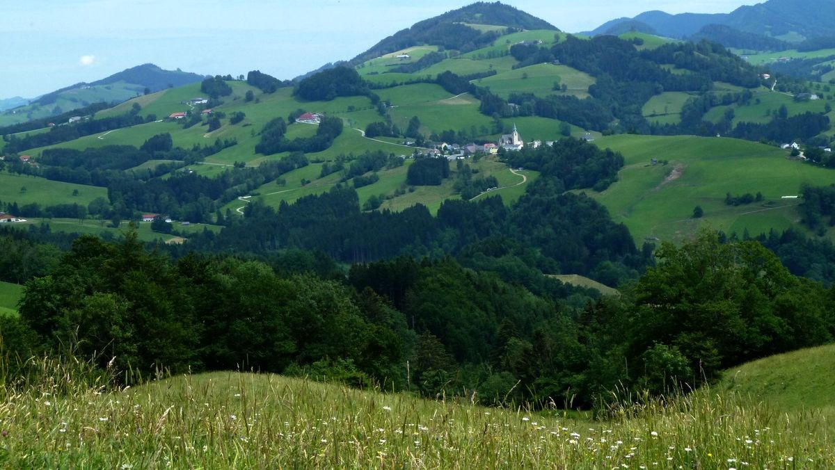 Die reizvolle Umgebung von Maria Neustift vom Sträßchen durch die südseitigen Wiesenhänge des Glasenbergs