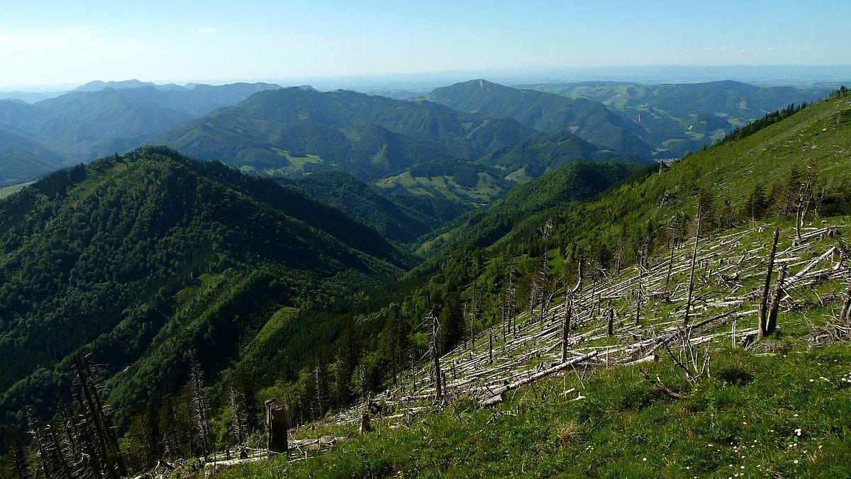 Blick auf der Reichraminger Hintergebirge und Schieferstein