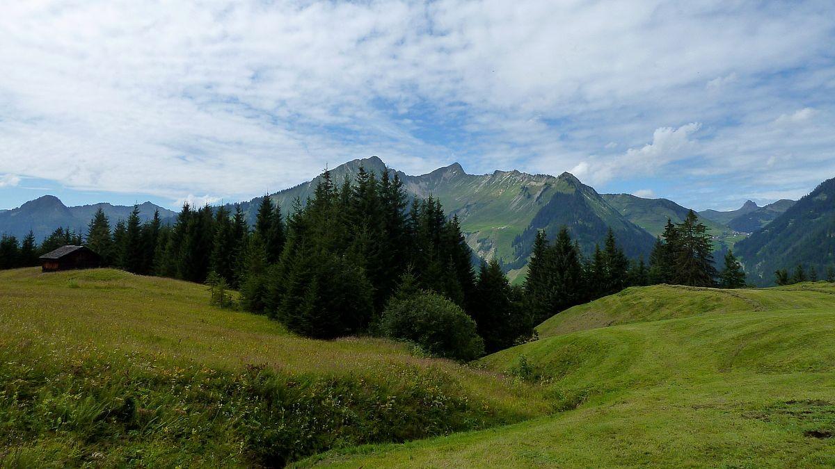 Gebiet bei Steinbild Vorsäß gegen Türtschhorn, Glatthorn und Damülser Mittagspitze
