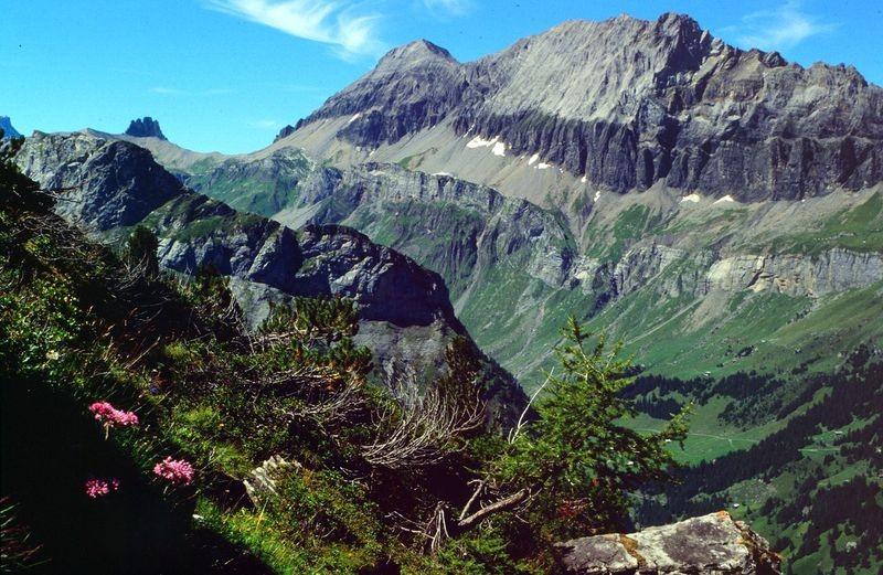 Das Lohnermassiv vom Steig Jegertosse - Fisialp