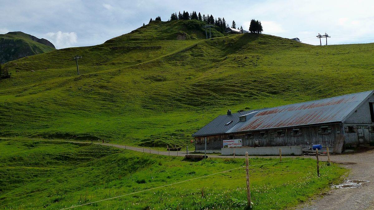 wildguntenalpe und Bergstation des Suttislifts. Links davon der bewaldete Kopf.