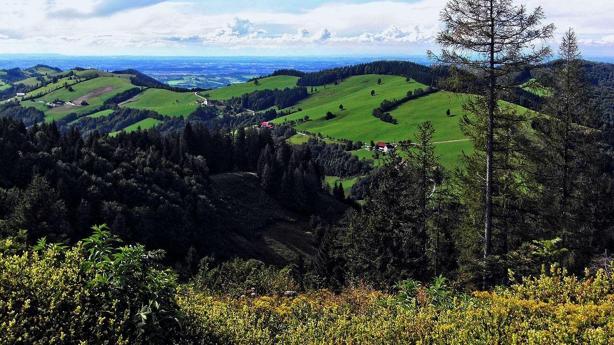 Sicht auf Alpenvorland und Böhmerwald