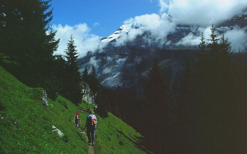 Auf dem linken Anstieg von Kandersteg zur Oeschinenalp. Hinten Doldenhorn