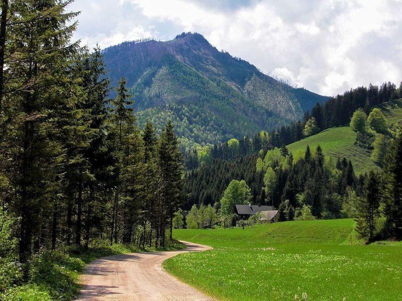 In der Welchau - einem Seitental in der Breitenau bei Molln
