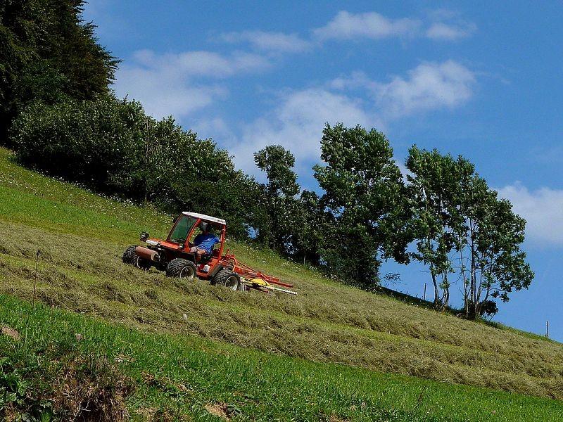 Traktor im Südwesthang des Freithofbergs beim Heuwenden