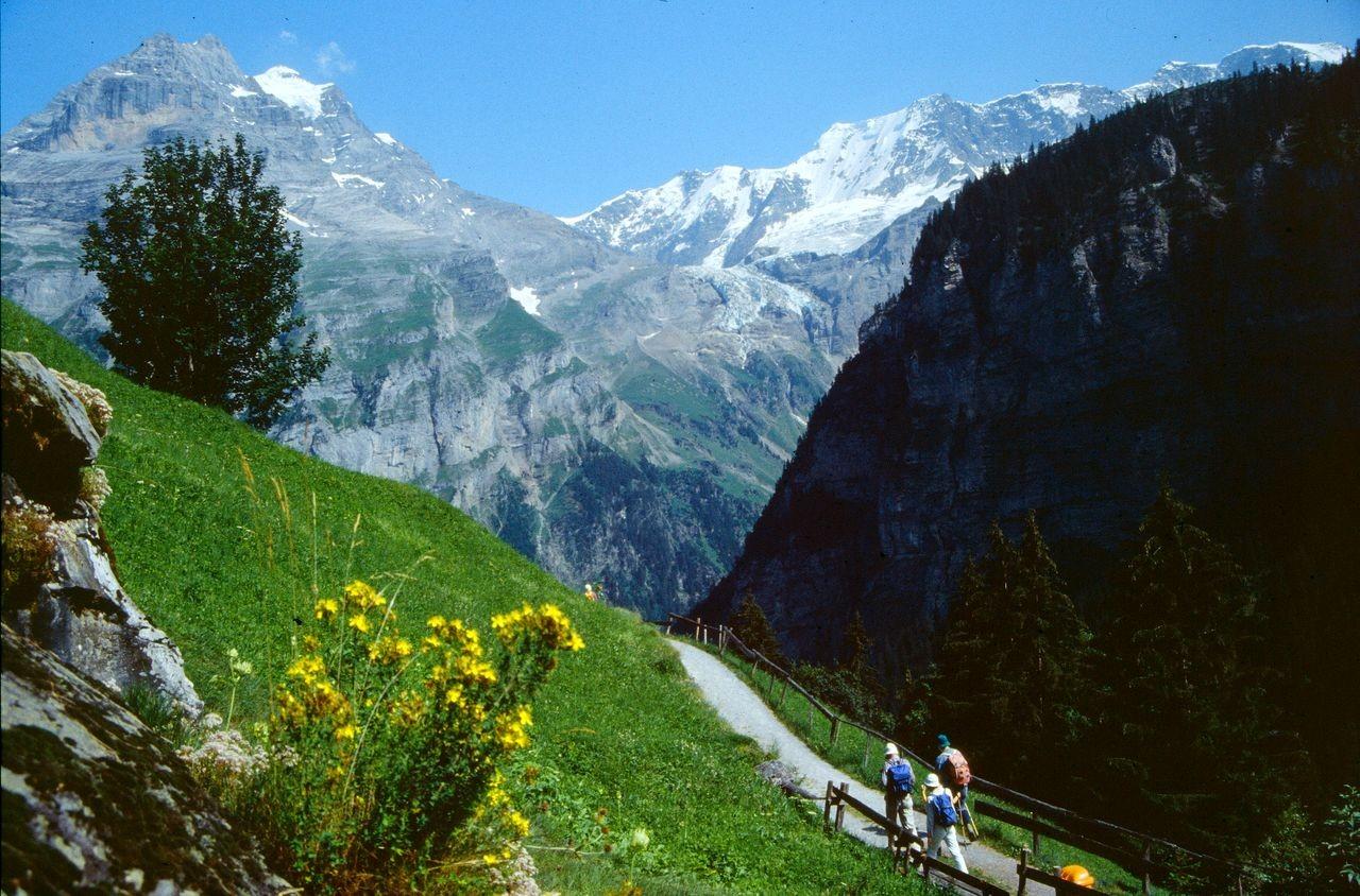 Herrliche Ausblicke vom Weg über dem Sefinental nach Gimmelwald. Im Hintergrund Jungfraumassiv, Rottalgletscher und Ebnefluh.