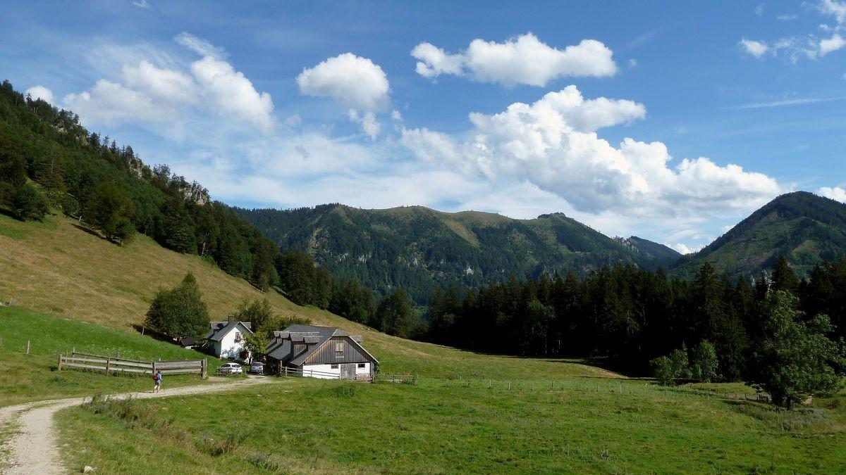 Gschwendtalm mit Brunnbacheck, Almkogel und Höhenberg