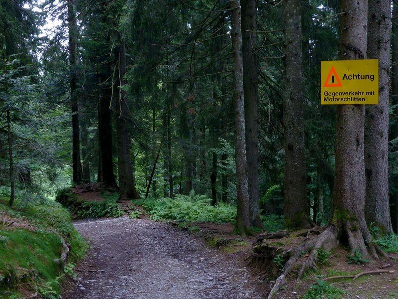 Hinweis- und Warnschild auf dem Weg 105 zum Bödele, das nur für den Winter gelten dürfte.