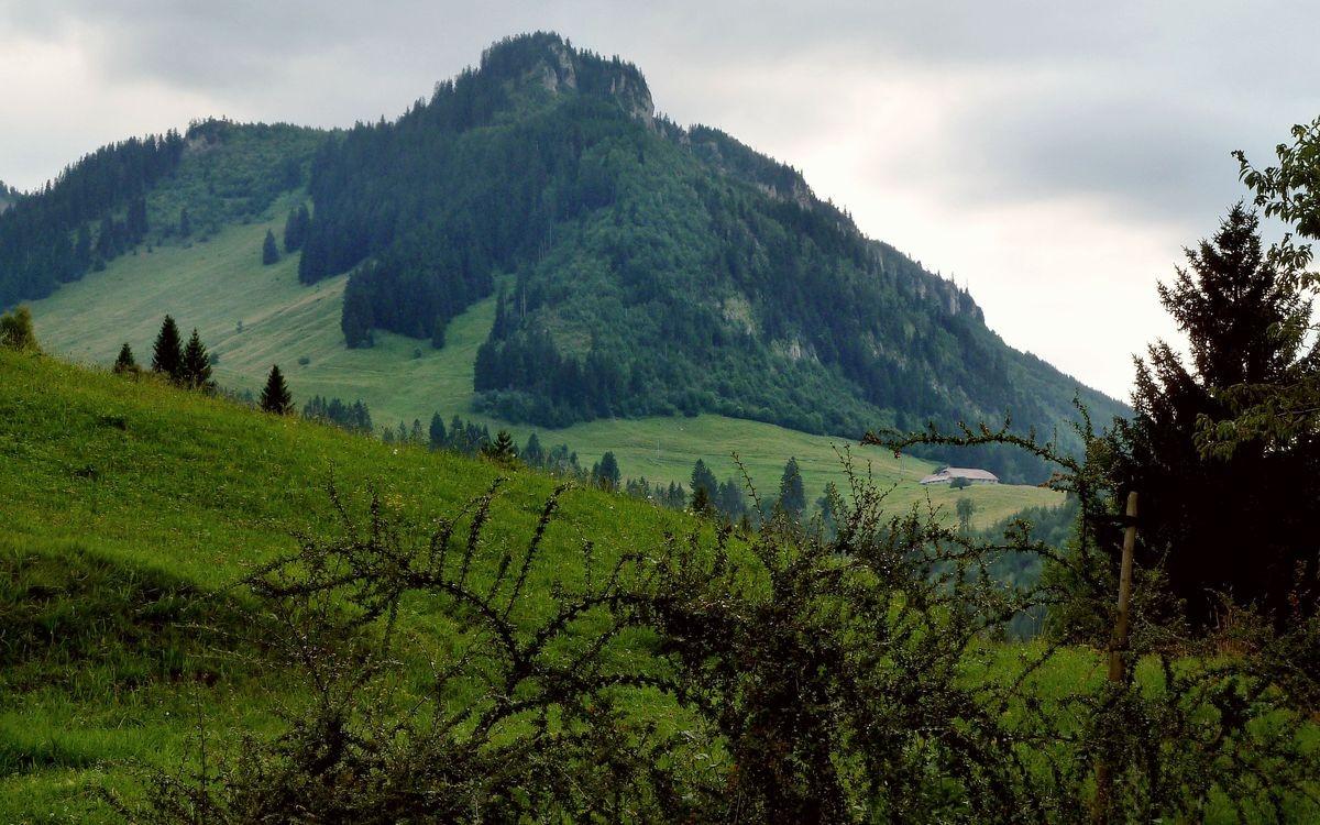 Alpgelände südlich des  Berggasthofs Kühberg