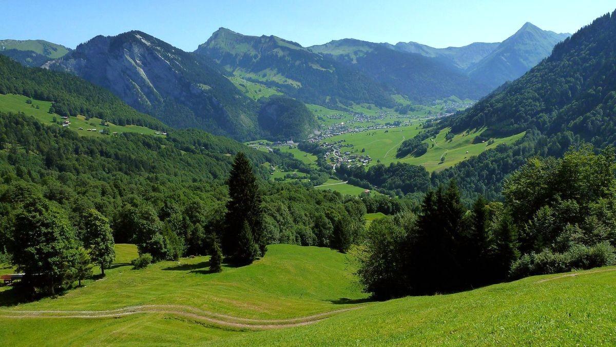 Mittagsfluh und Diedamskopf vom überwiegend geteerten Zufahrtsweg zum Alpengasthof Edelweiß