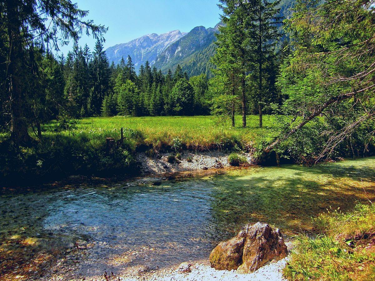 Krumme Steyr zwischen Schiederweiher und Polsterstüberl