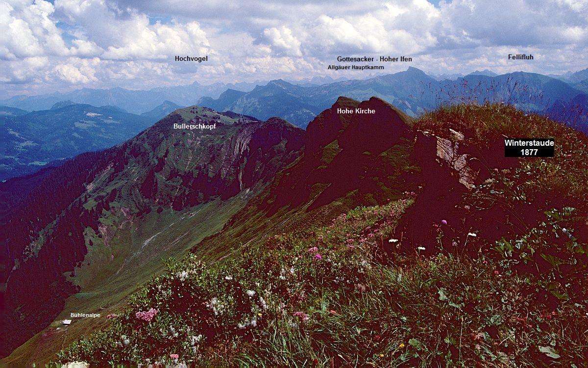 Auf der Winterstaude. Sicht nach Osten gegen Allgäuer Alpen.