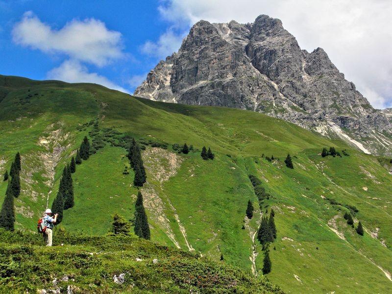 Der grüne Rücken der Höferspitze und der Große Widderstein