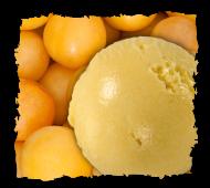 Sorbets plein fruits