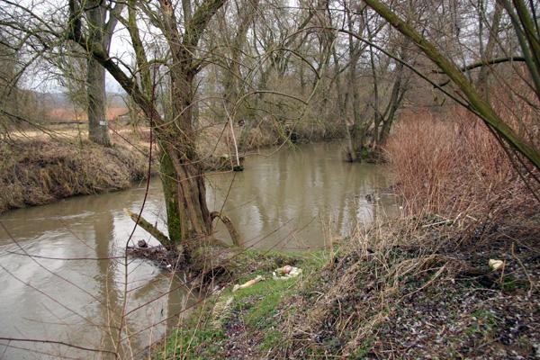 Elsenzlauf in Mauer (Foto B. Budig, 02.02.2008).