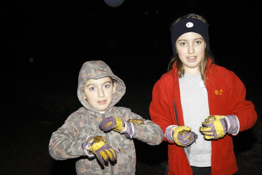 Malte und Henrike helfen beim Zählen und natürlich beim Umsetzen der Erdkröten. (Foto: B. Budig)