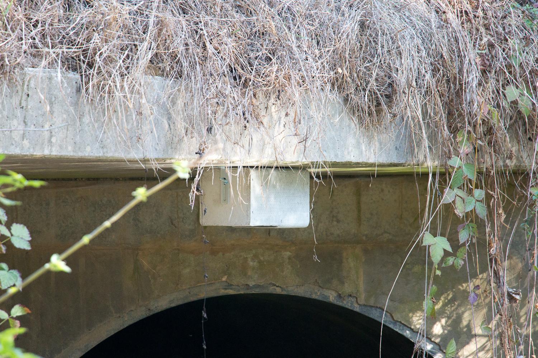 Mit Einflugloch nach unten hängt der Kasten für die Wasseramsel
