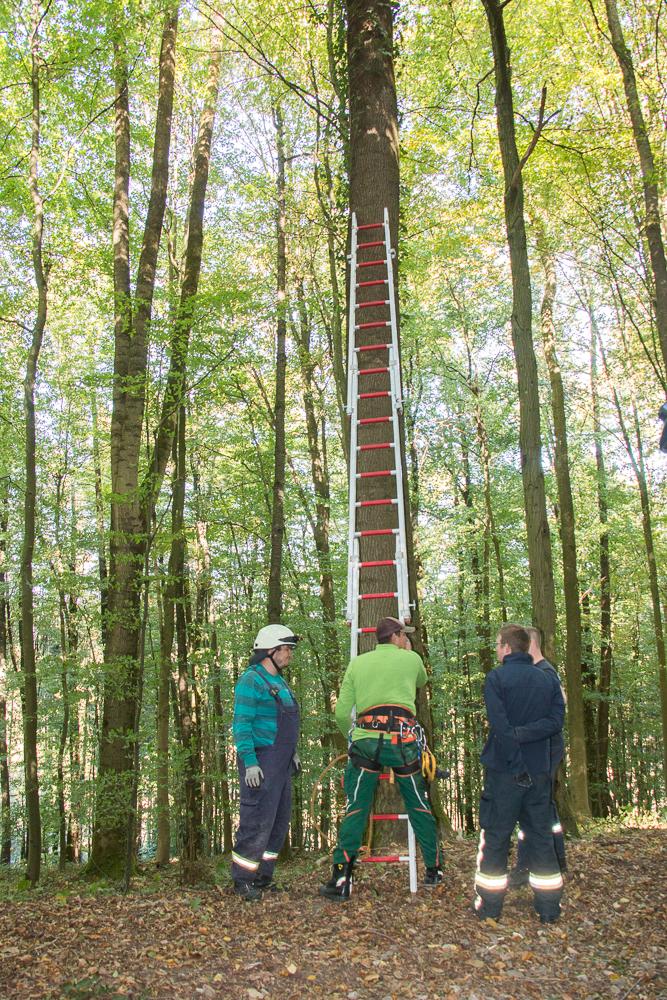 Die 9 m lange Leiter steht
