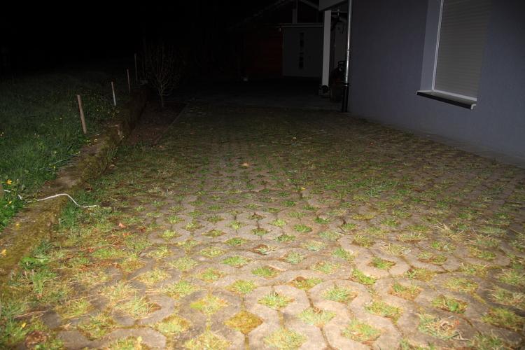 Garten-und Hofeinfahrt unter der sehr viele Erdkröten im Rahmen der Rückwanderung hervorlaufen und dann leider direkt auf die Erlenstraße geraten.