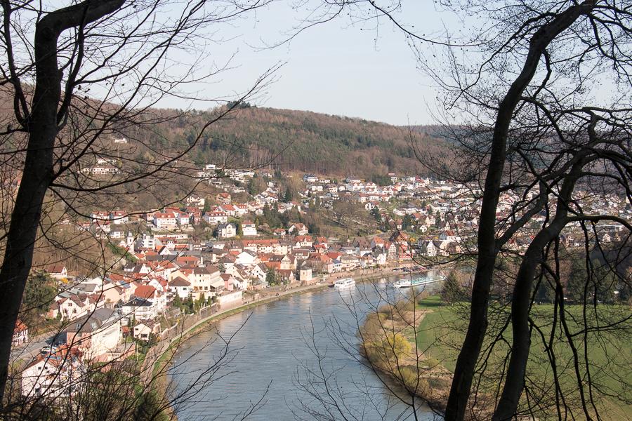 Blick auf den Neckar bei Neckarsteinach (Foto: B. Budig)
