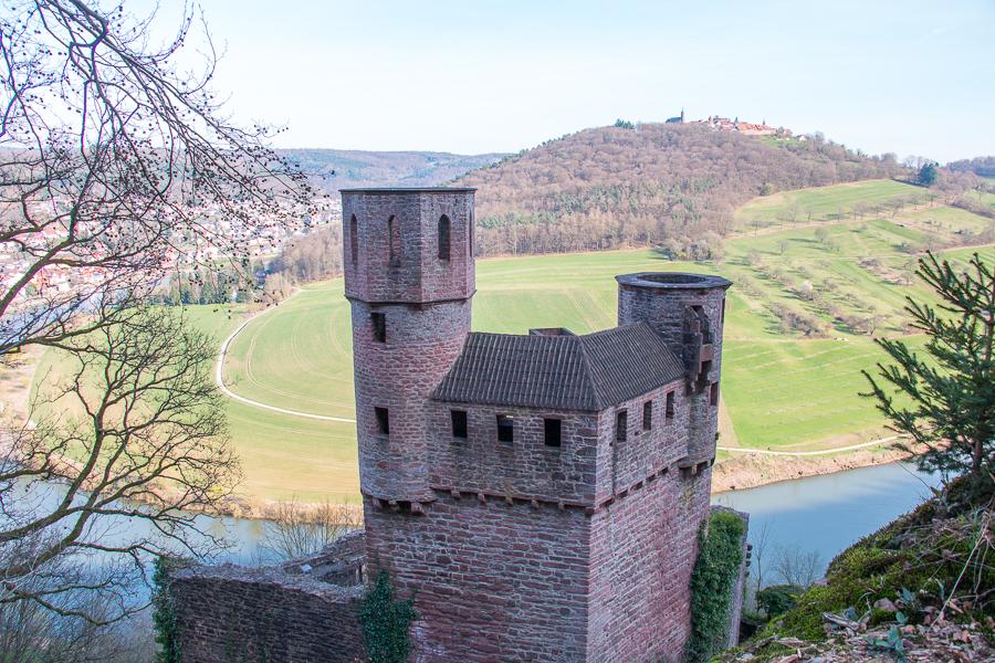 Schwalbennest (Foto: B. Budig)
