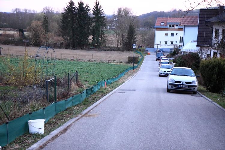 Der Zaun entlang der Erlenstraße als Leiteinrichtung. (Foto: B. Budig)