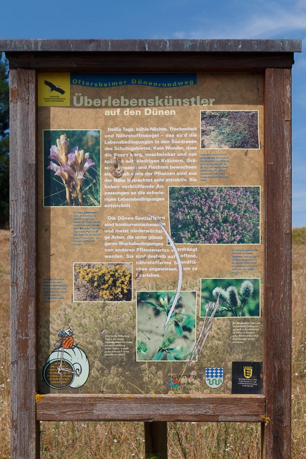 "Rundwegstafel ""Überlebenskünstler"" (Foto: B. Budig)"