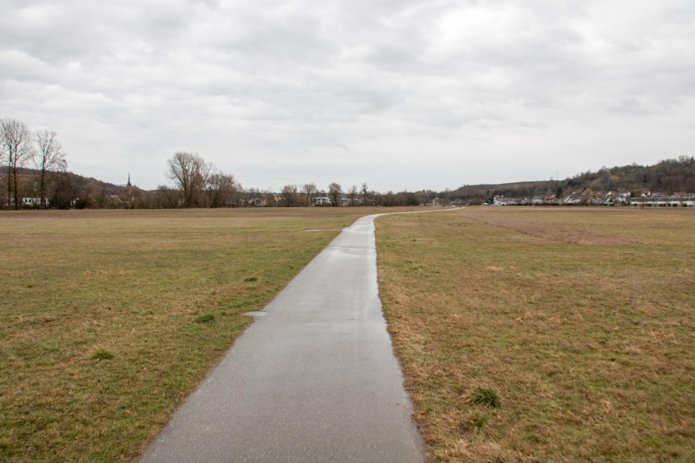 Wiesental auf Seite Reilsheim