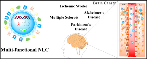 Multi-functional NLC. Brain Cancer. Ischemic Stroke. Alzheimer´s Disease. Multiple Scerois. Parkinson´s Disease.