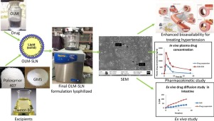 Photos of production of the excipient and of the analysis results of solid lipid nanoparticles