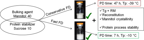 Graphic which shows fast and conservative freeze-drying results of protein-mannitol-sucrose formulations
