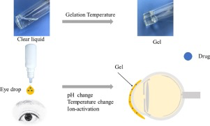 Overview in-situ gelling opthalmic drug delivery system