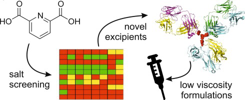 Process overview and different steps to reach novel salt of dipicolinic as new excipient