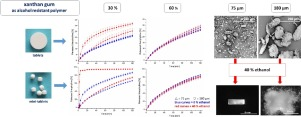Pictures of particles sizes and analysis results of xanthan gum als rate-controlling polymer