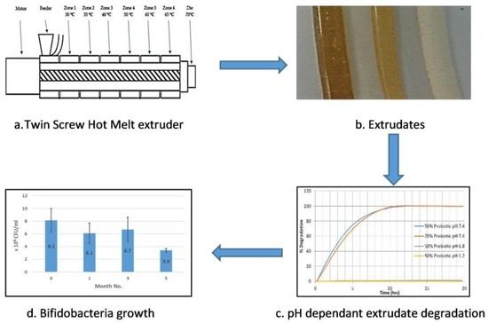 Four steps evaluation of pharmaceutical-grade shellac as a melt-extrudable encapsulation polymer