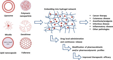 The association of nanocarriers and gels provides new therapeutic possibilities due to the combined properties of the two technologies