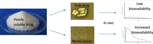 Overview graphic with bioavailabilty comparison of bulk drug and drug nanocrystals