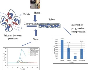 Picture of study layout of analysis of cell viability of probiotics in relation to compression process