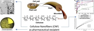 In this review, the use of Cellulose Nanofibers in drug formulation with a focus on poorly soluble drugs is featured.