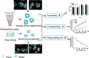 Differences in properties of HPMC co-processed fillers prepared by fluid-bed coating and spray drying