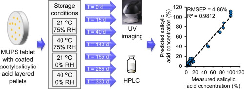 UV imaging of multiple unit pellet system tablets.