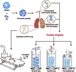 Effect of powder properties on the aerosolization performance of nanoporous mannitol particles as dry powder inhalation carriers
