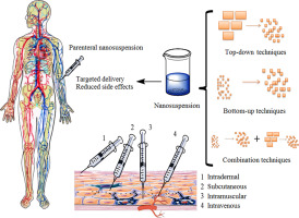 Graphic which shows the different usages of parenteral nanosuspensions in Pharmaceutics