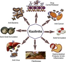 Kaolinite strongly interesting for the developments in the pharmaceutical industry
