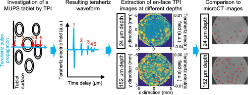 Terahertz pulsed imaging was used to analyse the inner structure of multiple unit pellet system (MUPS) tablets.