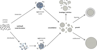 Graphic shows particle process during spherical agglomeration for pharmaceuticals