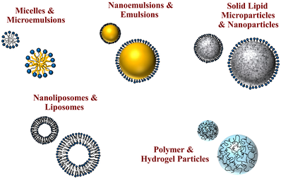 Delivery by Design (DbD) of nanoparticle- and microparticle-based delivery systems