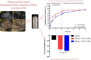 Microscope photo and analysis results for interpolyelectrolytes as carriers of drugs