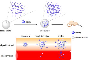 pH-sensitive hydrogel microspheres as carrier of hydrocortisone sodium succinate